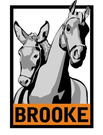 Brookes cutout